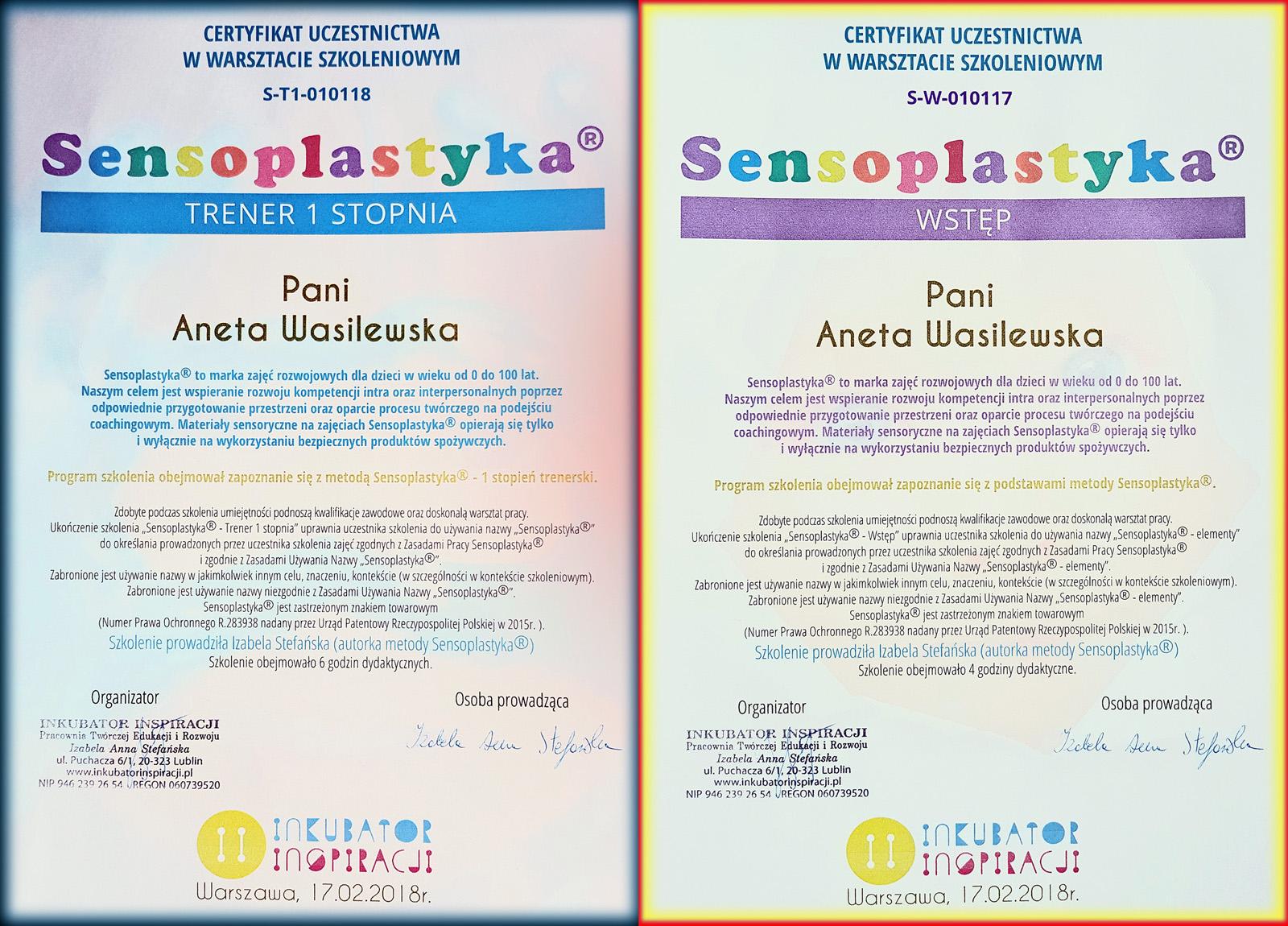 Sensoplastyka_Aneta Wasilewska